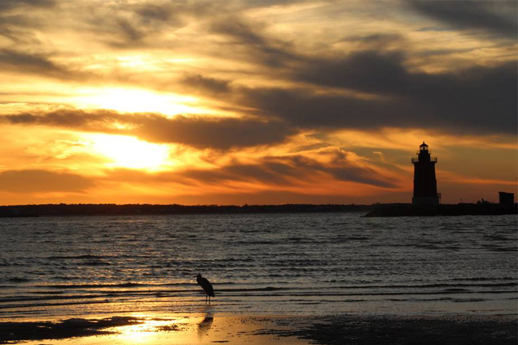 Experience Outdoor Adventure at Cape Henlopen State Park