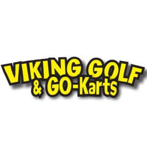db viking logo 300x300